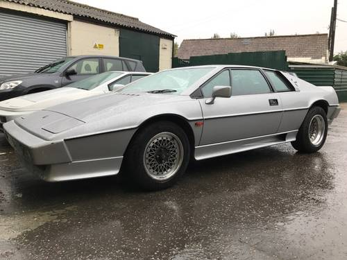 1980 LOTUS ESPRIT WANTED For Sale (picture 6 of 6)