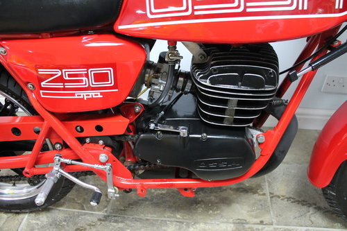 1982 OSSA 250 Copa Formula 3 One of only 600 built SUPERB For Sale (picture 3 of 6)