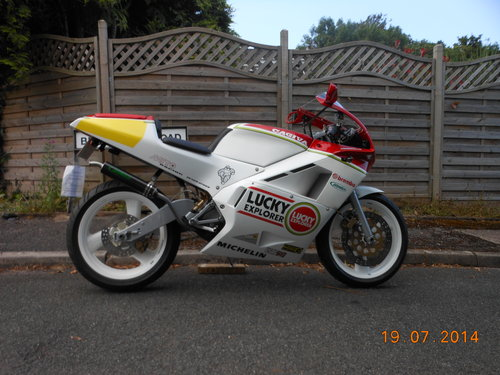 1991 Cagiva Mito 125 Lucky Explorer For Sale (picture 1 of 6)