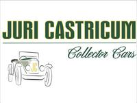 Castricum Collector Cars image